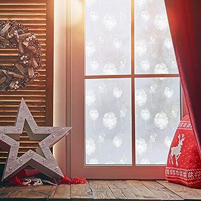 Homein Fensterfolie Milchglasfolie Sichtschutzfolie Klebefolie Selbstklebend Fenster Sichtschutz Blickdicht für Bad Duschwand Dusche Folie ohne Kleber Anti UV mit Motiv Muster Pusteblume von HOMEIN CO.,LTD bei TapetenShop
