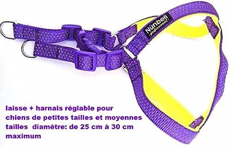 Ensemble laisse + harnais pour chiens de petite et moyenne taille,.Diamètre de :25 cm au minimum à 30 cm au maximum, laisse classique et harnais réglable, couleur violet et doublure douce couleur jaune fluo