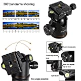 Andoer Q-666 Pro SLR Camera Tripod monopiede Ball Head Changeable Traveling Compact Portable