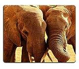 Mauspad Gaming Mauspad Elefanten lieben in Afrika PN00X676