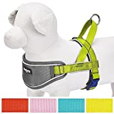 Blueberry Pet 52-66cm Brust 3M Multifunktions Reflektorstreifen Verstellbares Neopren Gepolstertes Hundegeschirr in Zitrusgrün