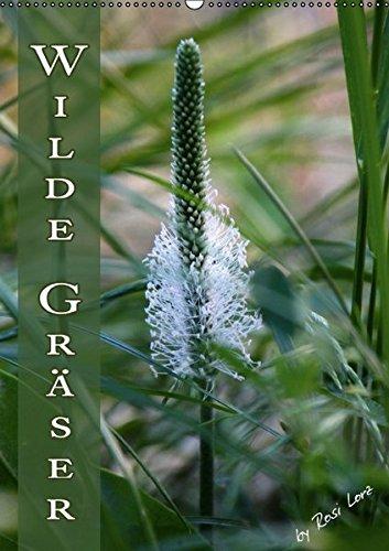 Wilde Gräser / Geburtstagskalender (Wandkalender immerwährend DIN A2 hoch): Verschiedene Gräser ganz natürlich. (Monatskalender, 14 Seiten) (CALVENDO Natur)