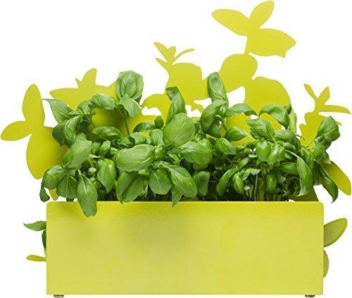 Sagaform 5016475 Form Herb Storage Stand, Green by Sagaform Sagaform Green