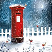 Pack of 8 Charity Christmas Cards (ABA-11205) from Abacus Cards - Artistic Post Box and Robins in The Snow - Sold in Support of The British Heart Foundation
