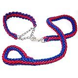 COOME Haustier Hundehalsband & Leine Geflochtene Hundeleine 1,2 m Lang Hund Leine Führstrick (XL, Blau + Rot)