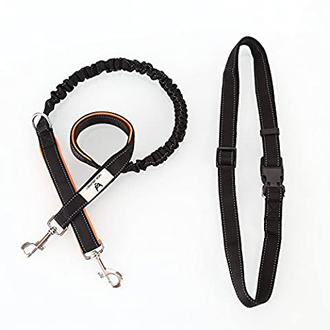 New Journey Hands Free Dog Leash-Double Handle-Retractable Shock Absorbing Bungee,Reflective