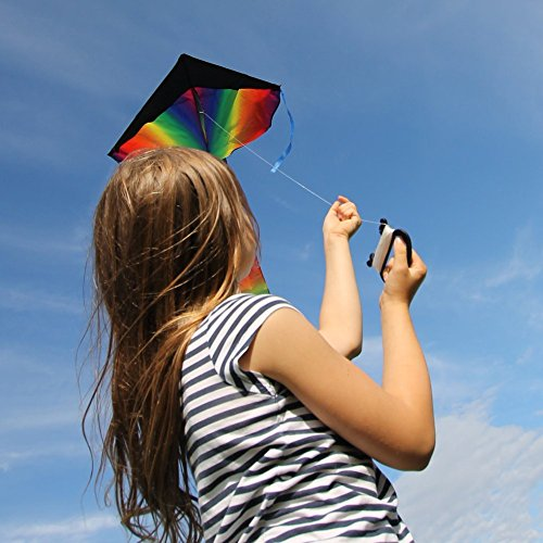 kite-cometa-gigante-a-la-venta-flota-en-la-brisa-velas-perfectas-para-nios-fcil-de-volar-liviano-y-e