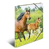 Herma 7140 Sammelmappe DIN A4 Kunststoff, Motiv Pferde, Serie Tiere, Eckspanner, 1 Zeichenmappe, auch für Kinder