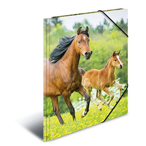 Herma 7145 Sammelmappe DIN A3 Kunststoff, Serie Tiere, Motiv Pferde, mit Gummi-Eckspanner, 1 Stück
