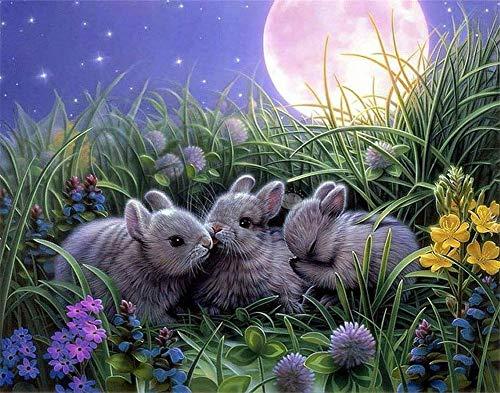 Malen nach Zahlen Kit Diy Ölgemälde Kit für Kinder und Erwachsene - Kaninchen 16