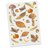 Mr. & Mrs. Panda Karte, Sprüche, Postkarte Herbst mit Spruch - Farbe Weiß