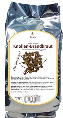 Knollen-Brandkraut - (Phlomoides tuberosa, Phlomis tuberosa) - 50g