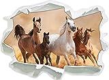 Stil.Zeit Western Pferde in Wüste mit Fohlen, Papier 3D-Wandsticker Format: 92x67 cm Wanddekoration 3D-Wandaufkleber Wandtattoo