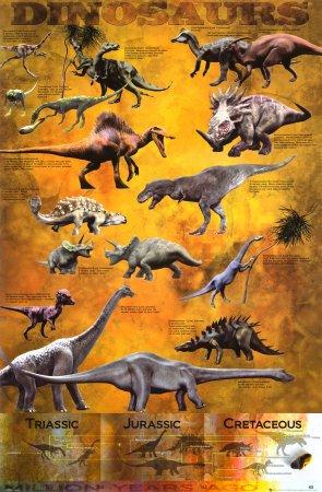Póster 'Dinosaurios', Tamaño: 61 x 91 cm