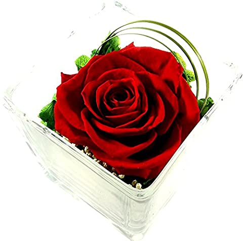 Rosen-te-amo Arrangement with Red Roses - Naturally Preserved Flowers Real Roses in glass vase - NO WATER REQUIRED - roses will last for many years - Everlasting red