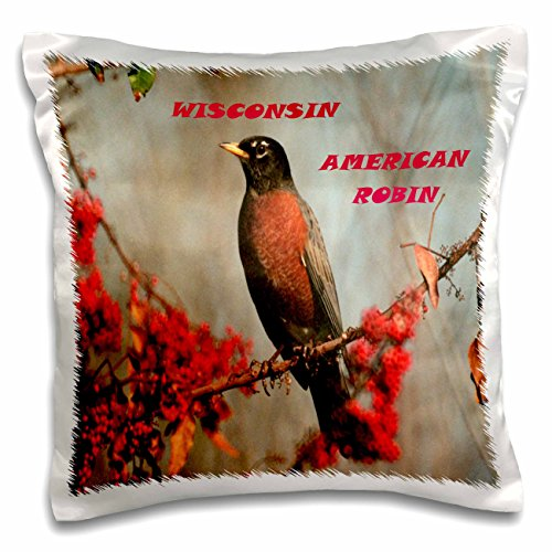 Florene State Birds - State Bird Of Wisconsin American Robin - 16x16 inch Pillow Case (pc_50943_1)