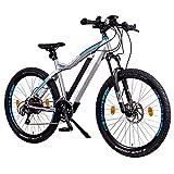 NCM Moscow Plus E-Bike Mountainbike, 250W, 48V 14Ah • 672Wh Akku, 27,5'/29' Zoll (14 Ah Silber + 27,5')