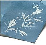 Solar-Fotopapier 20 Blatt