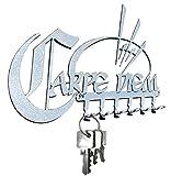 steelprint.de Schlüsselbrett/Hakenleiste Carpe Diem ++ Nutze Den Tag ++ Stahl (Silber)