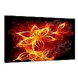 Visario Leinwandbilder 4147 Bild auf Leinwand Firefly, 80 x 60 cm