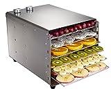 VIOY Edelstahl-Trockenfrucht-Maschinen-Frucht-Dehydrierungs-Lufttrockner-Kleiner