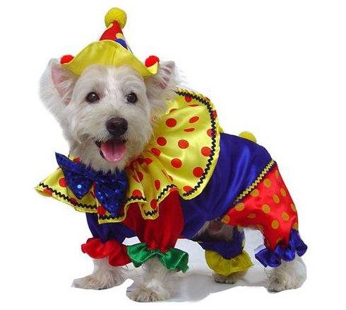 Kostüm Jester Red - Puppe Love Glänzend Clown Deluxe Kostüm für Hunde, Size 2 (9.25