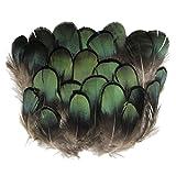 ERGEOB® Grün Kupfer Hühnerfedern Fertigkeit Basteln Feder Fasanenfedern Federhaar 4-8cm/1.5-3 Zoll Länge 100 stuck