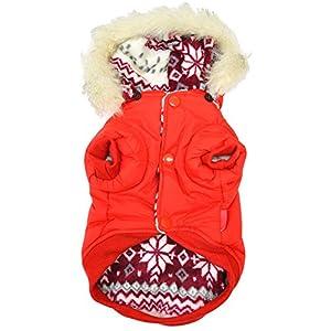 Brightup Hoodie Hiver Épais flocon de neige deux côtés Porter Vêtements Pour Chiot Chien
