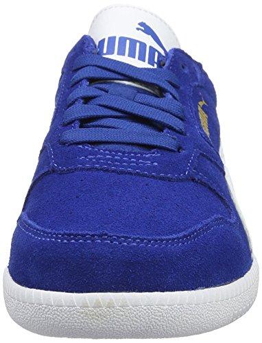True Puma Trainer Blue SD Sneaker 26 Puma White Unisex Adulto Icra Blu UB0wqUO
