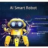 Altsommer AI Smart RC Roboter mit Mechanische Kraft für Kinder Gescheken,RC Roboter mit Infrarotmessung,Folgen,Erkunden Sie den Dualen Modusr DIY-Roboter für Jungen,Mädchen (A)