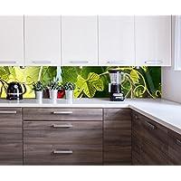 Suchergebnis auf Amazon.de für: küchenrückwand glas motiv - 200 ...
