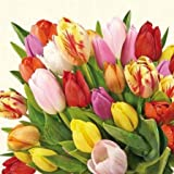 Ambiente Colourfull Tulips Serviettes 33 x 33 cm