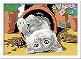 Ravensburger Malen nach Zahlen 28345- Freches Kätzchen, Malset