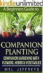 A Beginners Guide to Companion Planti...