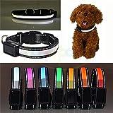 USB ricaricabile con luce LED e regolabile collare LED lampeggiante riflettente di sicurezza animali del cane, impermeabile, misura per piccolo medio grande cane di animali domestici–Prezzo Xes