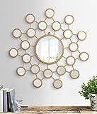 Flourish concept Decorative Mirror