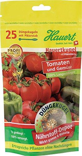 hauertkugel-tomate-a-25-kugeln