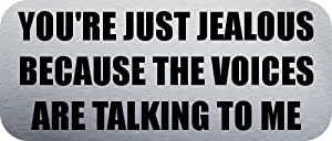 YOU'RE JUST JEALOUS BECAUSE THE VOICES ARE TALKING TO ME - Funny Car Bumper Sticker/Vinyl Decal [2921BLK]