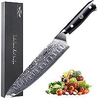 Kitchen Emperor Couteau de Chef, Couteaux de Cuisine de Damas 67 Couche Acier avec Poignée G10