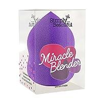 Miracle Blender Sponge