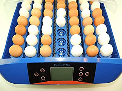 Campo24 V56S Brutapparat, Inkubator, für bis zu 56 Eier Inkubator Motorbrüter von Campo24 - Du und dein Garten