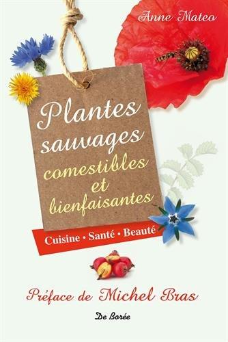 plantes-sauvages-et-bienfaisantes