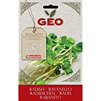Geo Rabanito - Semillas para germinar, 12.7 x 0.7 x 20 cm, color marrón