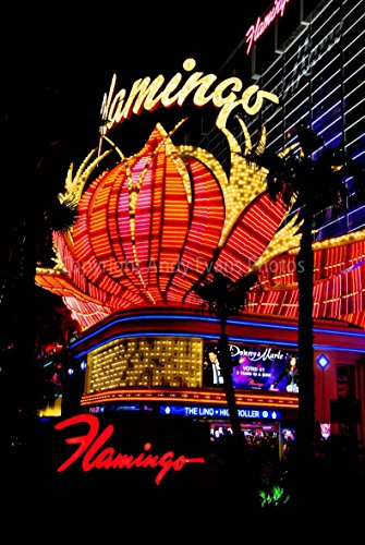 Flamingo Hotel Foto ein 30,5x 45,7cm Hochwertiger Fotodruck der Flamingo Hotel und Casino Neon Signs bei Nacht in Las Vegas Nevada United Staaten von Amerika Hochformat Foto Farbe Bild Fine Art Print Fotografie Durch Andy Evans Fotos (Hotel Foto)