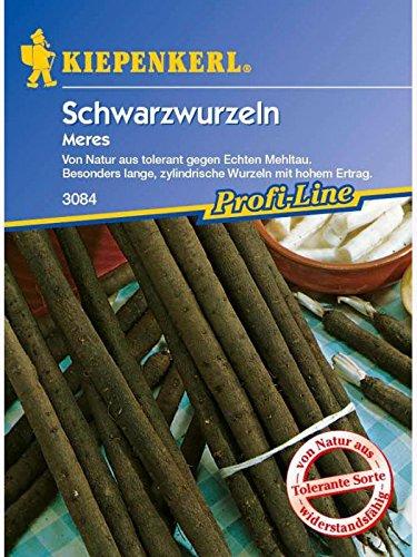 Image of Kiepenkerl Schwarzwurzeln Meres