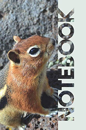 Notebook: Chipmunk Pet Useful Composition Book for Fans of the Siberian and Eastern Rodent por Molly Elodie Rose