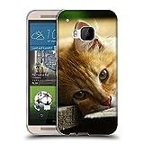 Just Phone Cases Schutz Hülle TPU Case Schutzhülle Silikon Tasche Dünn Transparent // V00004287 Katze liegend auf Holzbrettern // HTC One M9