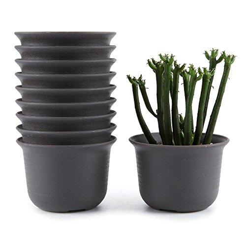 T4U 9CM Plastic Round Succulent Plant Pot/Cactus Plant Pot Flower Pot/Container/Planter Tan Package 1 Pack of 10