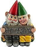 DWK 14,5 cm wachsender Alten, zusammen wachsender Gartenzwerg Paar in Liebe Best Friends Sammlerstück Statue für Innen Außen Garten und Home Decor