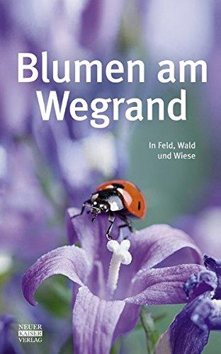 Blumen am Wegrand: In Feld, Wald und Wiese